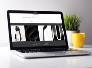 BotsandUs Webiste design & build